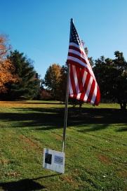 honor flags.JPG